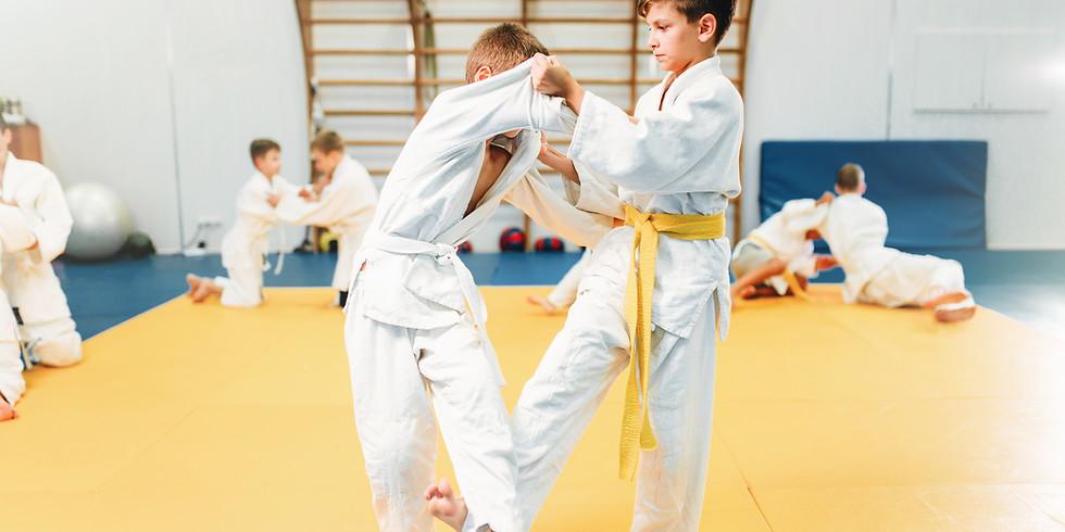 B+T Tiny Tigers Martial Arts Demo Class