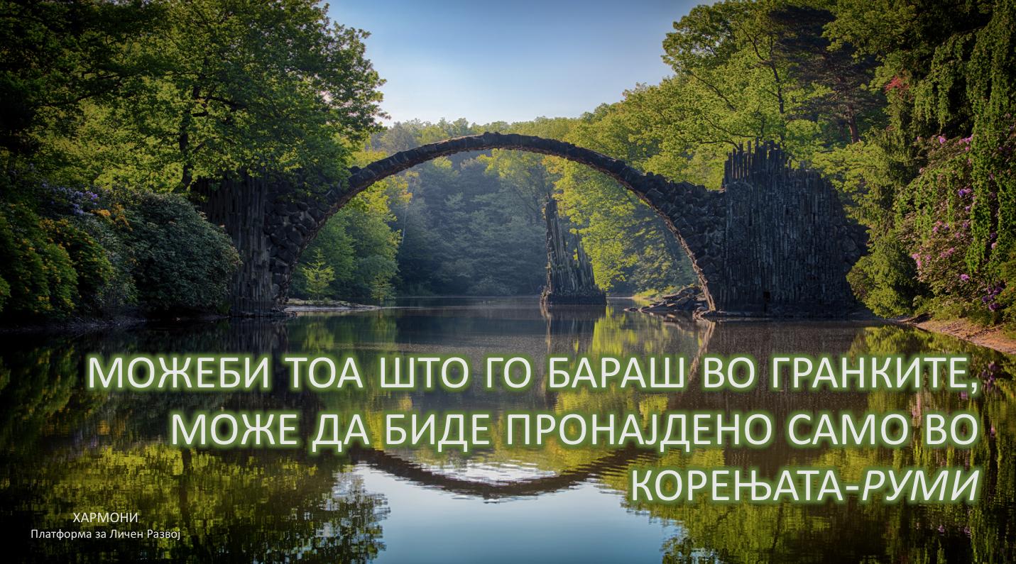 Korenjata-Rumi.png