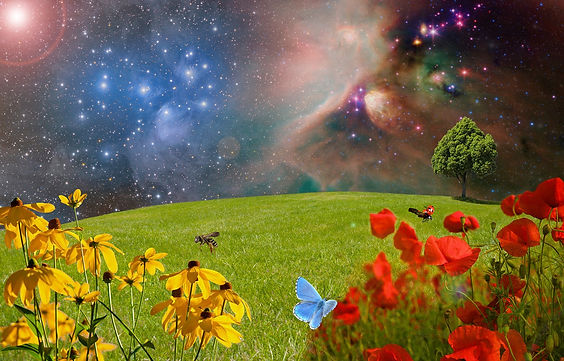 meadow, background ofuniverse and flowers and butterfly