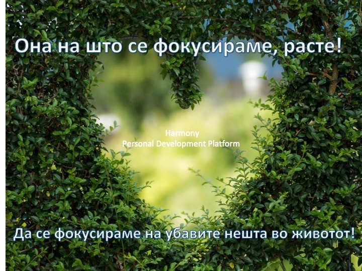Фокус Мк.jpg