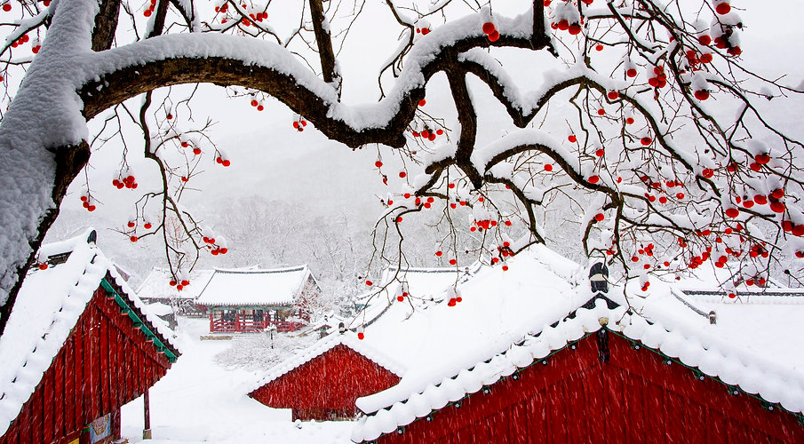 3820145201700027k_Winter Landscape of a