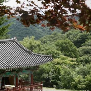 วัดแพ็งนยอนซา(Gapyeong)