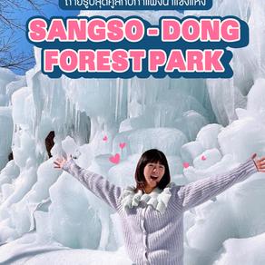 โลเคชั่นถ่ายรูปแบบเอลซ่า Sangso-dong Forest Park