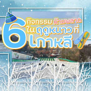 ✨6 กิจกรรมห้ามพลาด...ในฤดูหนาวที่เกาหลี 🌨️