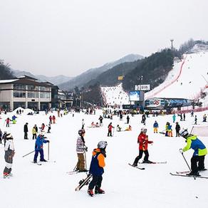 เริ่มแล้วกับฤดูแห่งการเล่นสกีในประเทศเกาหลี