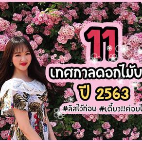 11 เทศกาลดอกไม้บาน 2563🌸🌸 ลิสไว้ก่อน!! แล้วค่อย!! ไปกัน~~