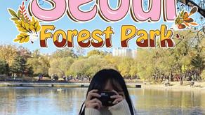 ดินเล่นเก็บภาพกับใบไม้เปลี่ยนสีที่ Seoul Forest Park