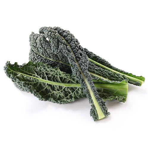 Kale crespo y liso