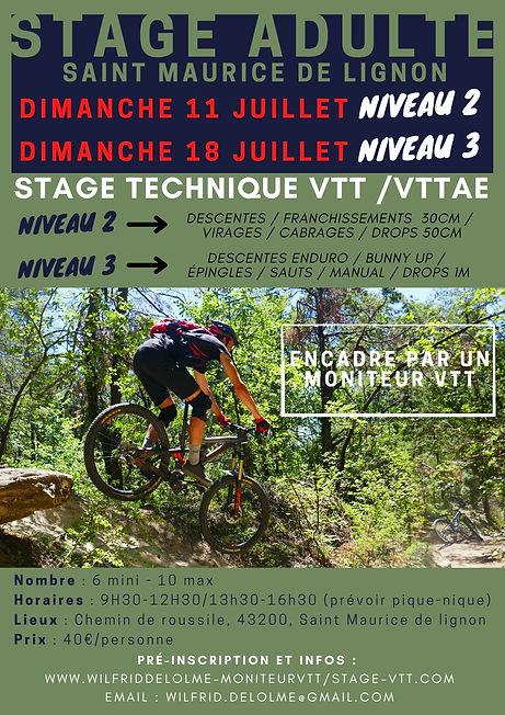 stage VTT niv 2 et niv 3.jpg