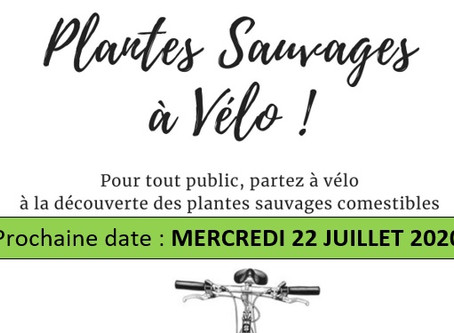22.07.20 Balade Découverte des PLANTES SAUVAGES A VÉLO