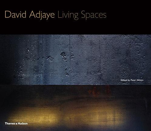 David Adjay: Living Spaces