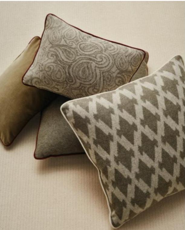 2021 Collecton - pillows