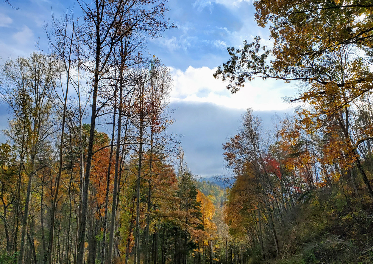 Autumn in Pigeon Forge