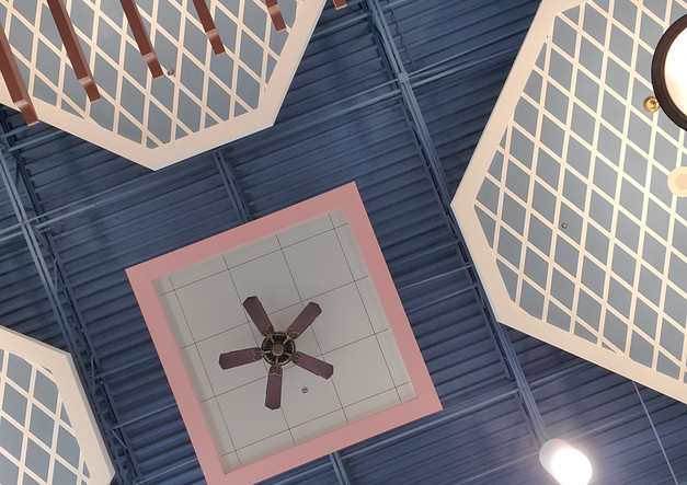 Mall Ceiling