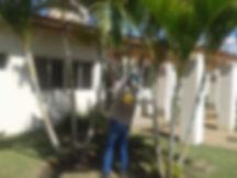 Manutenção de Jardins - Jundiaí, Campinas e São Paulo