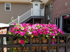 Flowers on the patio at Park Side Pub