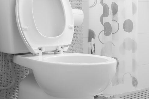 White toilet bowl.jpg
