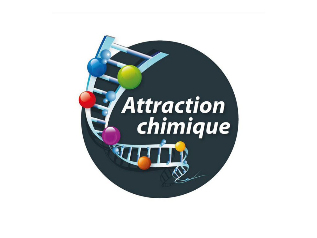 Attraction chimique