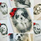 layout christmas cards 2.jpg
