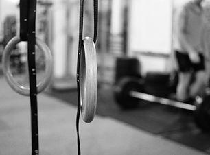 Propel Fitness Dunedin pull up rings