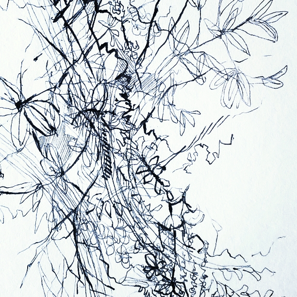 Sweeping Branches (detail)