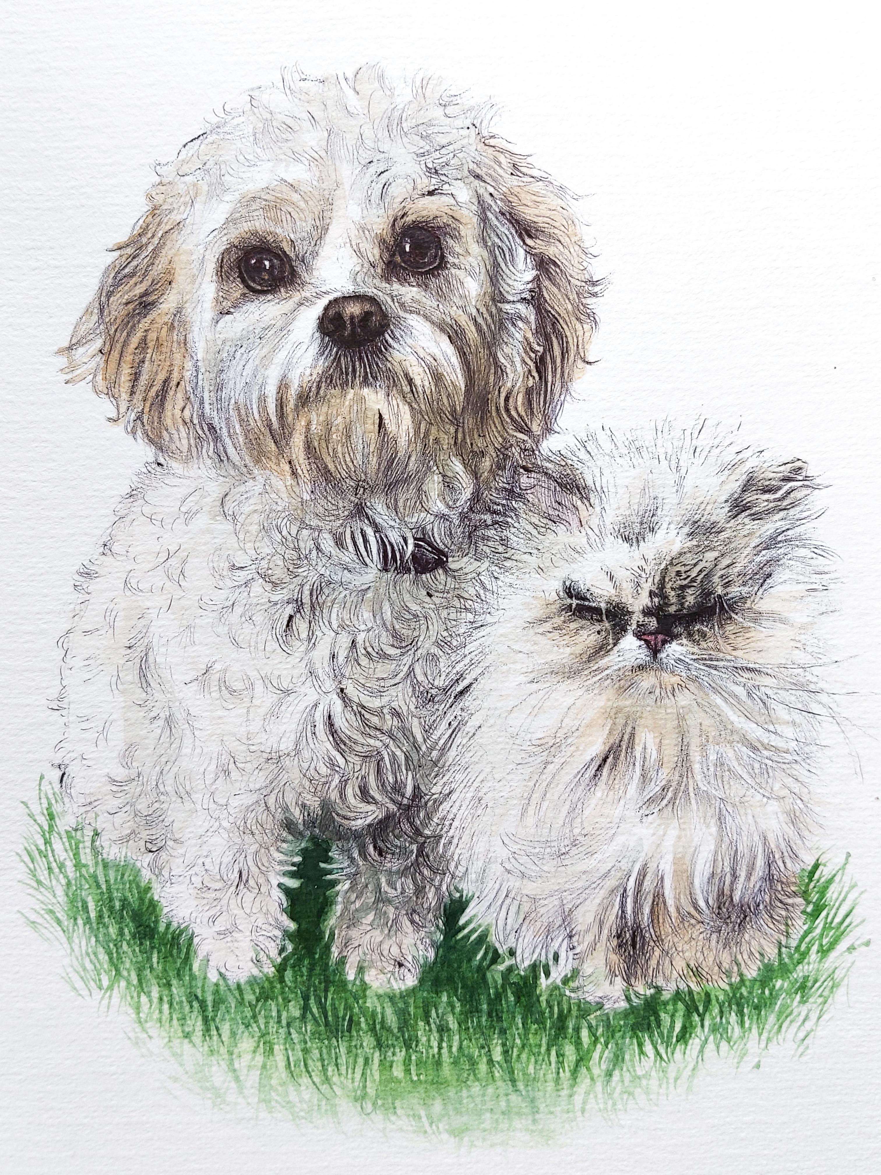 Daisy & Misty
