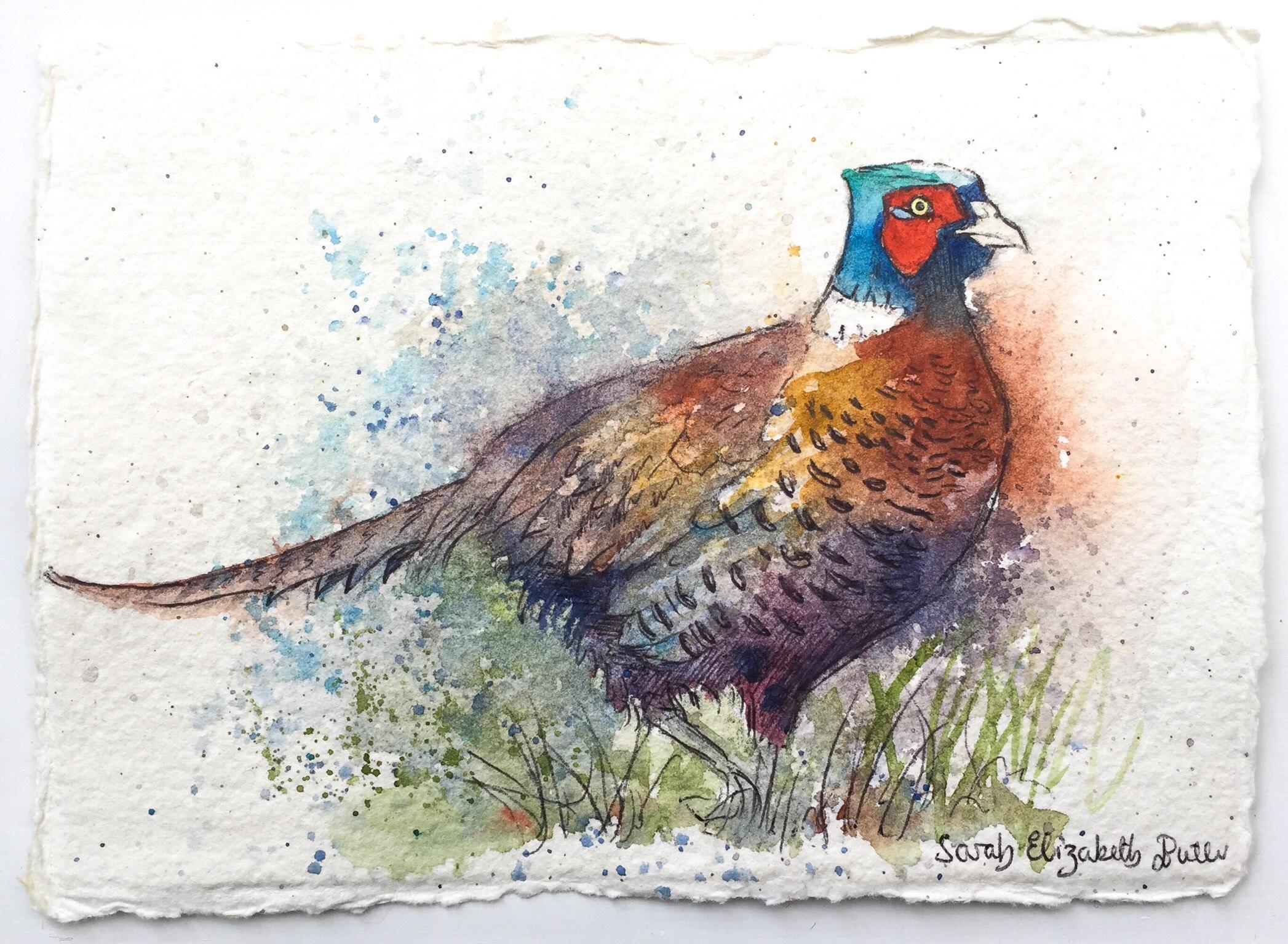 'Pheasant I'