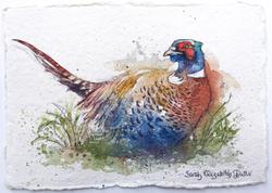 'Pheasant II'