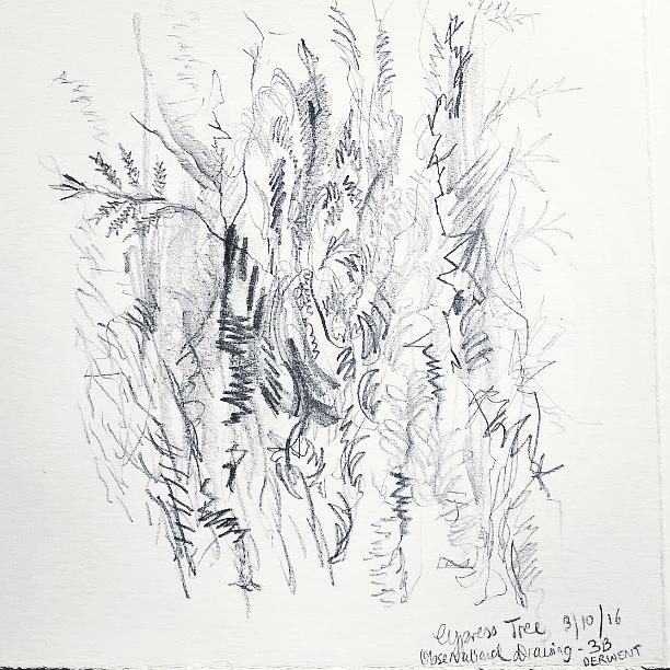 Cypress patterns