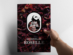 BENEFITS OF ROSELLE