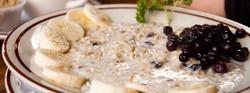berts-healthy-oats-large