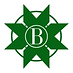 Burnaby Star Green .png