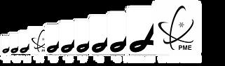PME_llider-2020_paraSite.png