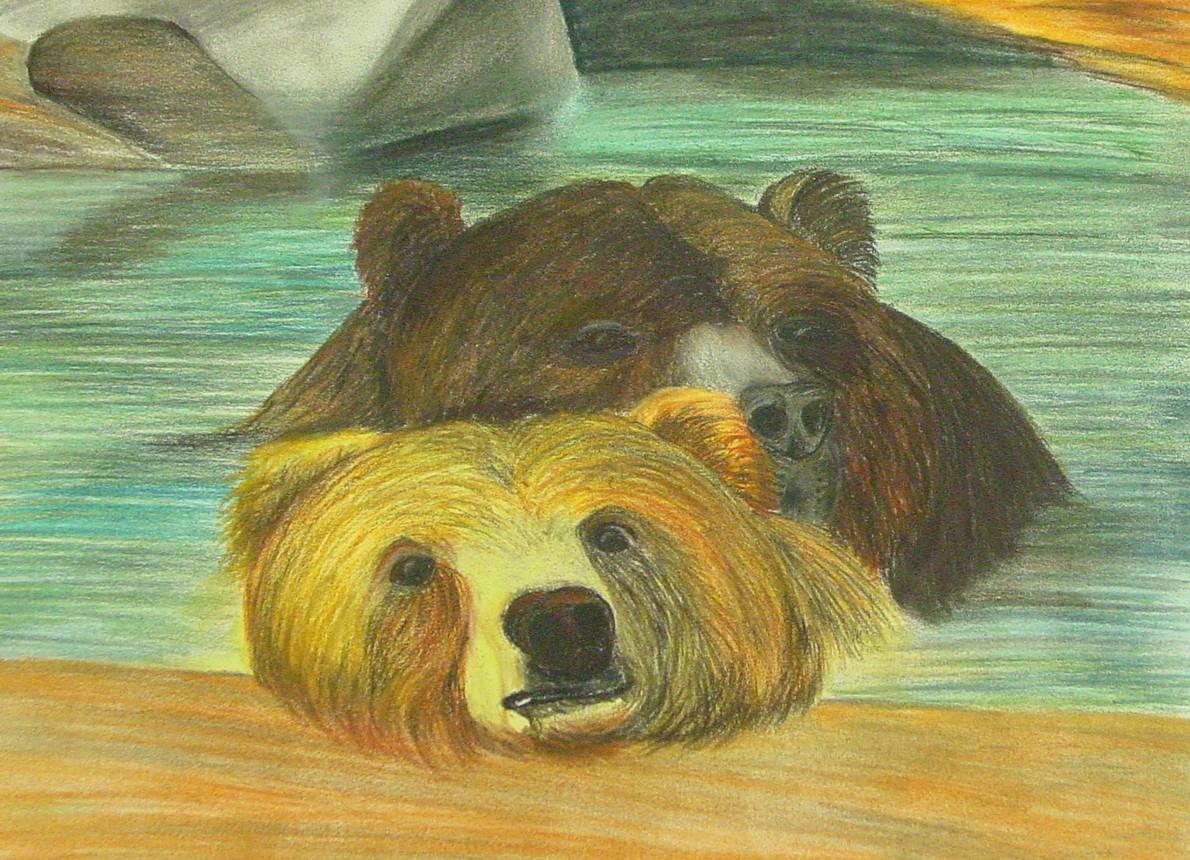 The Bears.jpeg