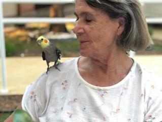 Animais contribuem para saúde de idosos em isolamento