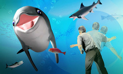 dolphin_video_game_inset
