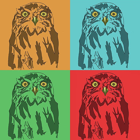 pop art owl illustration
