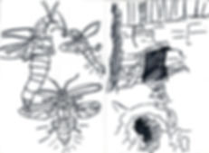 Insect and cave sketch