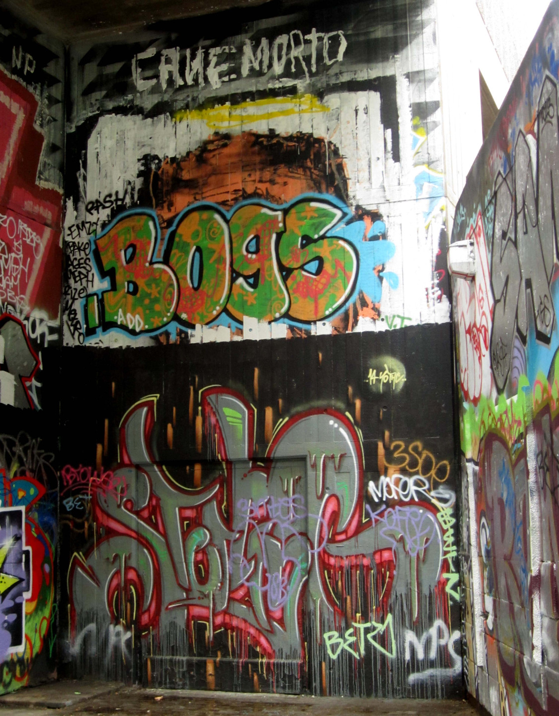 BOGS and Storm G