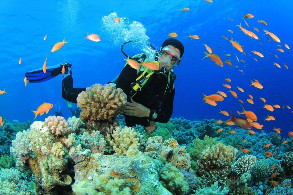 Scuba Diving Kavos Corfu - Explore Kavos Underwater - Kavos Ocean World - Kavos Hidden Wonders - Kav