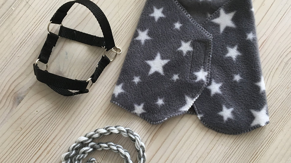 Gray warp, halter and halter rope set for pony