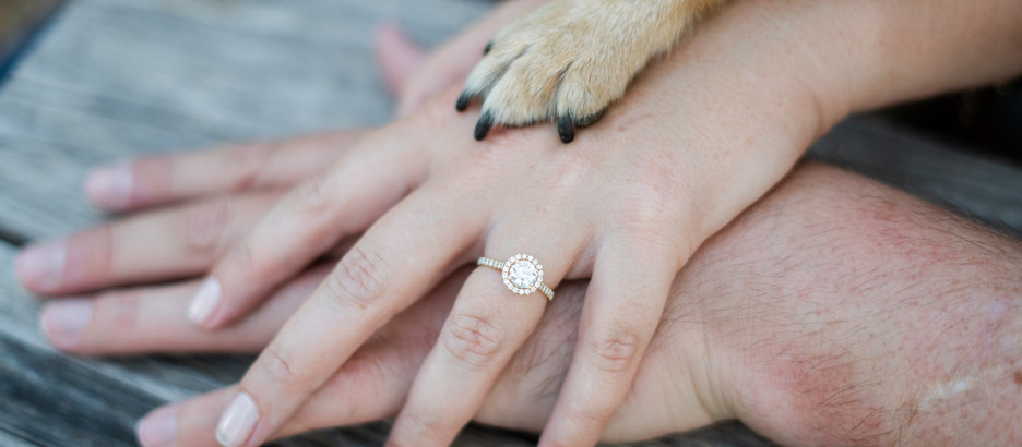 Best Proposal Places in Tampa, Florida