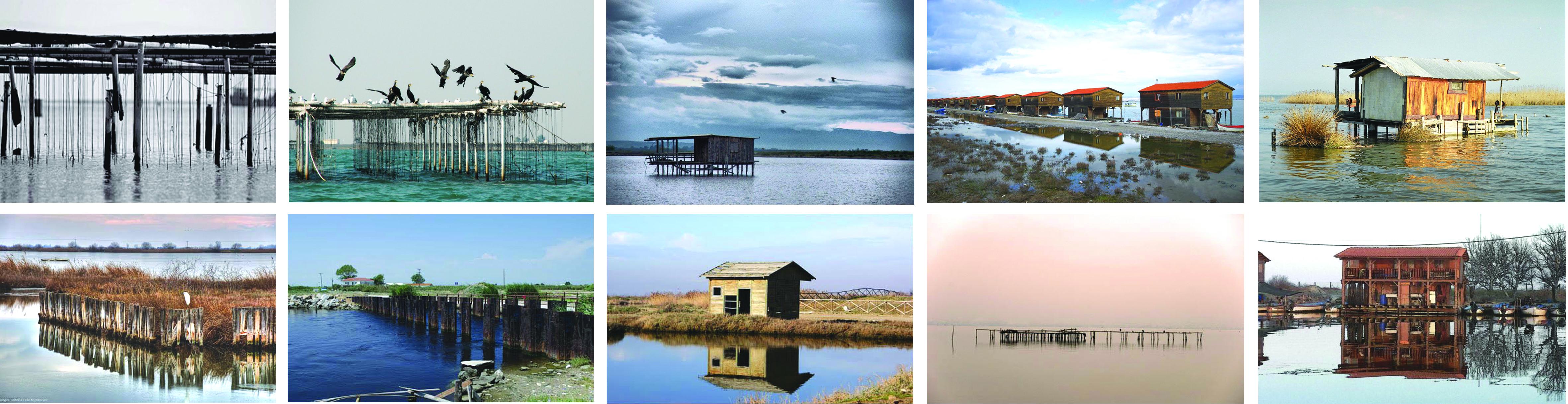 wetland inspiration photos