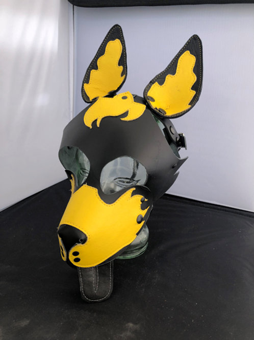YELLOW FLAME PUPPY 2