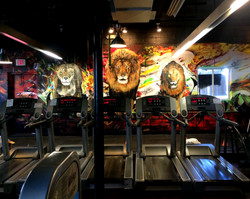 Lion mural by NY muralist Manrique