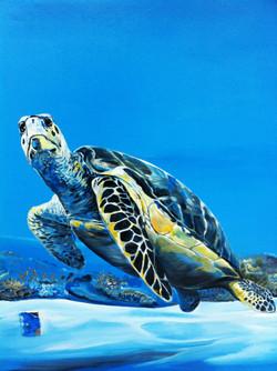 Detail of MRF Turtle Mural