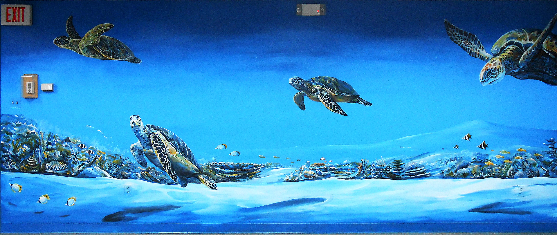 MMAD Turtle Mural in MRF Conf Room