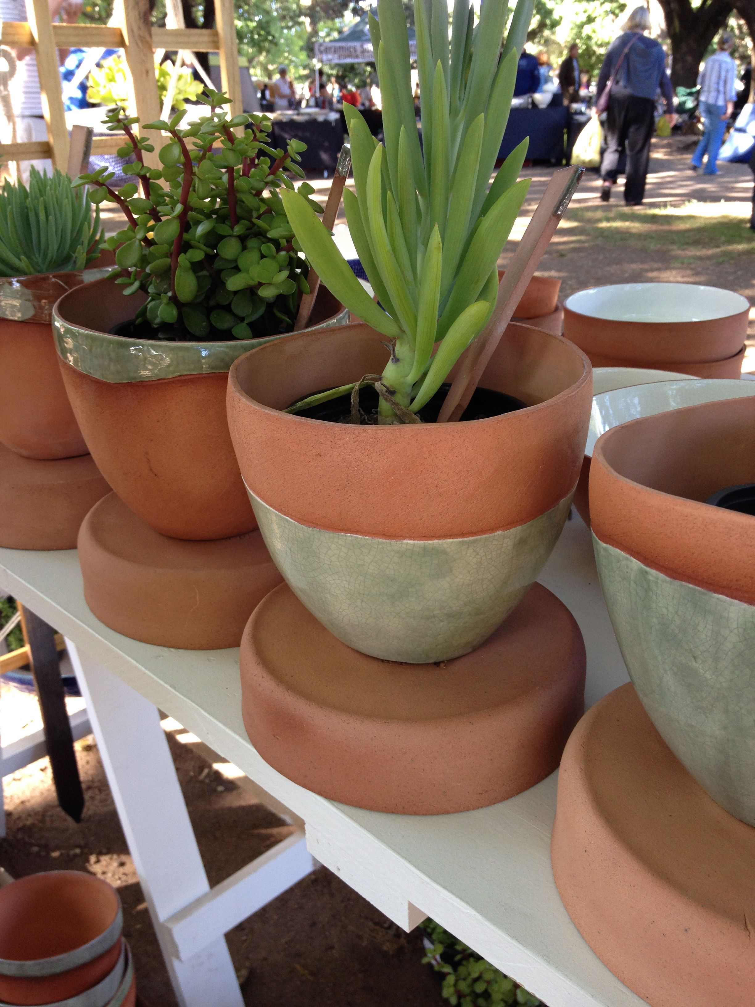 Terracotta & green planter