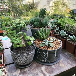 Juliet_Eidelman_Ceramics_planter