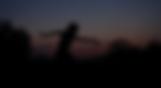 Captura_de_Tela_2018-12-22_às_1.20.05_PM